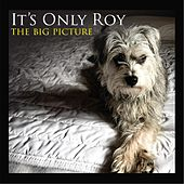 The Big Picture by It's Only Roy