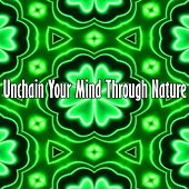 Unchain Your Mind Through Nature by Relaxing Spa Music