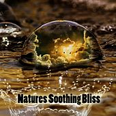 Natures Soothing Bliss de Best Relaxing SPA Music