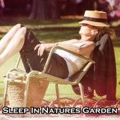 Sleep In Natures Garden de Water Sound Natural White Noise