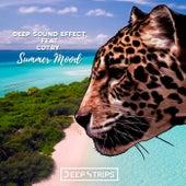 Summer Mood de Deep Sound Effect