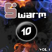 Swarm 10, vol. 1 by Various Artists