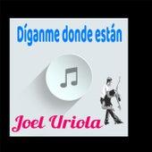 Diganme Donde Estan de Joel Uriola