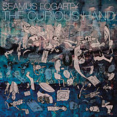 The Curious Hand de Seamus Fogarty