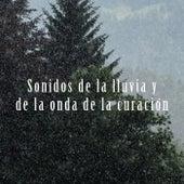 Sonidos de la lluvia y de la onda de la curación by Various Artists