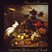 Exotic Birds and Fruit de Procol Harum
