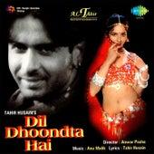 Dil Dhoondta Hai (Original Motion Picture Soundtrack) de Various Artists