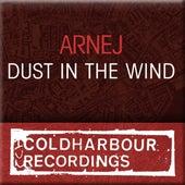 Dust In The Wind by Arnej