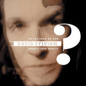 Do You Know Me Now? by David Sylvian