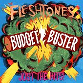Budget Buster by The Fleshtones