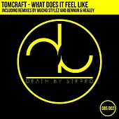 What Does It Feel Like? de Tomcraft