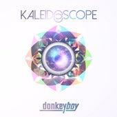 Kaleidoscope by Donkeyboy