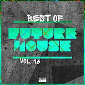 Best of Future House, Vol. 16 de Various Artists