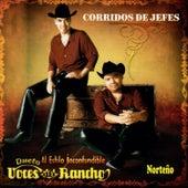 Corrido de Jefes by Voces Del Rancho