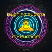 Cymatics de Laughing Buddha