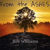 From the Ashes by Various Artists