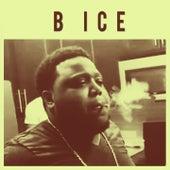 B Ice von B Ice