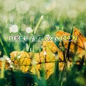 Deep Relaxation – Tibetan Massage, Peaceful Spa Music, Stress Relief, Meditation, Pure Mind, Anti Stress Music by Deep Sleep Music Academy
