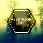Afternoon Mix by Various Artists