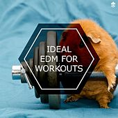 Ideal EDM For Workouts by Various Artists