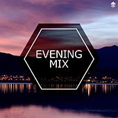 Evening Mix by Various Artists