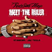 The Ruler by Various Artists