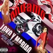 Andamos Loko Y Mariao by Tenor Independiente
