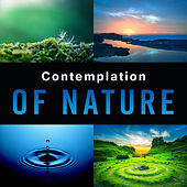 Contemplation of Nature – Deep Relaxation, Ambient Music, Therapy Sounds, Inner Balance by Nature Sounds (1)