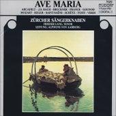 Choral Concert: Zurich Boys Choir - BACH, J.S. / GOUNOD, C.-F. / BRUCKNER, A. / FRANCK, C. / VERDI, G. / SCHUTZ, H. / MOZART, W.A. by Various Artists