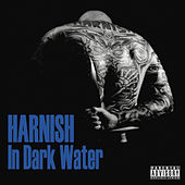 In Dark Water de Harnish