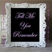 Tell Me You Remember de Sharis Roe