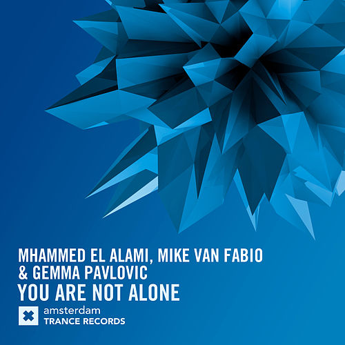 You Are Not Alone by Mhammed El Alami