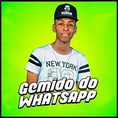 Gemido do WhatsApp de MC Léléto