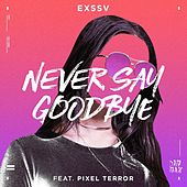 Never Say Goodbye (feat. Pixel Terror) by Exssv
