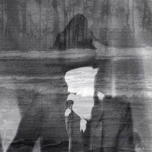 The Veils: