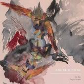 Angel's Bone de Various Artists