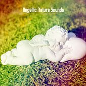 Angellic Nature Sounds von Rockabye Lullaby