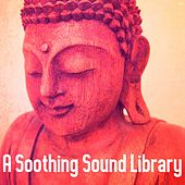 A Soothing Sound Library de Best Relaxing SPA Music