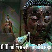A Mind Free From Stress by S.P.A