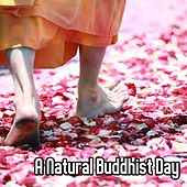 A Natural Buddhist Day by Lullabies for Deep Meditation