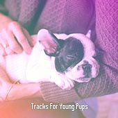 Tracks For Young Pups by Bedtime Baby