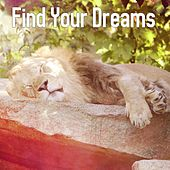 Find Your Dreams by Deep Sleep Relaxation