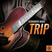 Alternative Music Trip by Various Artists