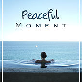 Peaceful Moment – Healing Music, Deep Sleep, Pure Therapy, Zen Spirit, Relax, Nature Sounds de Nature Sound Collection