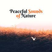 Peaceful Sounds of Nature – Easy Listening, Sounds to Calm Down, Relaxing Melodies, Nature Relaxation de Sounds Of Nature