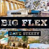 Big Flex by Dave Steezy