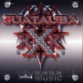 Guatauba XXX by Various Artists