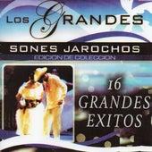 16 Grandes Exitos by Sones Jarochos