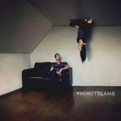 Illumina by Lamb