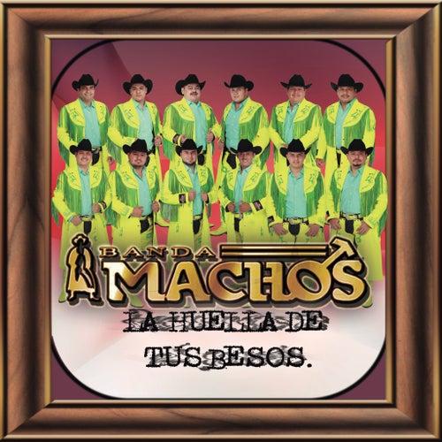La Huella De Tus Besos by Banda Machos